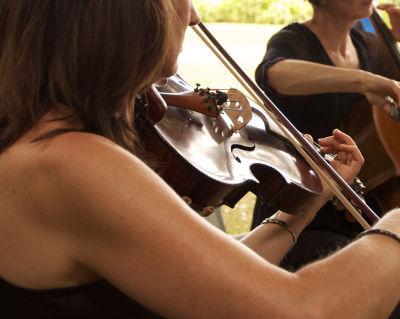 String Quartets For Weddings & Social Functions