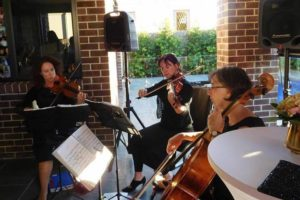 Blog - String Quartet Rental - String Quartet Christmas Music